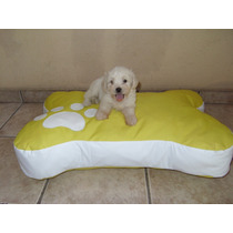 Puff Huesito Cama Perros Gatos, Accesorios Mascota Hm4