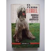 El Perro Lebrel - Mike Allen - 1985