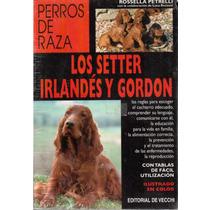 Los Setter Irlandés Y Gordon De Rossella Petrelli
