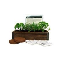 Reclamada Barnwood Planter Box Mini Herb Garden Kit - Grow H