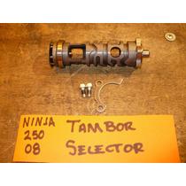 Kawasaki Ninja 250 2008 Tambor Selector