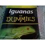 Guia De Iguanas De Compania