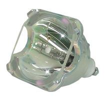Lámpara Para Samsung Sp50l3hr Televisión De Proyecion Bulbo