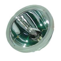 Lámpara Para Samsung Hln437w1x/xaa Televisión De Proyecion