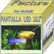 Display Pantalla P/ Mini Netbook Laptop Toshiba Nb255 Lqe