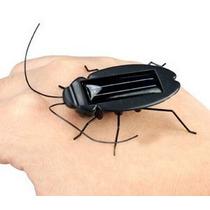 Cucaracha Solar Un Juguete Educativo Para Aprender