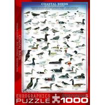 Jigsaw Puzzle - Aves Costeras Del Atlántico Norte 1000