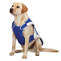 Chaleco Capa Refrescante Grande Guardian Gear Perro Mascota