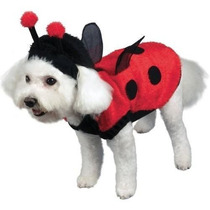Disfraz Para Perro Estaciones Hk Mens Mariquita Preciosa Ve