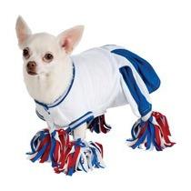 Disfraz De Perro Porrista Mascota