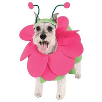 Disfraz Para Perro Hocico Daisy Perro Halloween Costume Blo