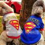 Sweater Sudadera Playera S - M - L - X L Perro Superman E4f