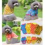 Suéter Para Perro, 3 Colores, Incluye Regalo.descuentos