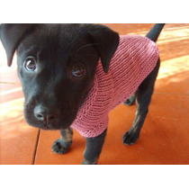 Hermosos Sweateres Tejidos A Mano. Protege A Tu Perrito