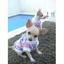 Ropa Para Perros, Sueter Super Calientito, Para Mascota Nvd