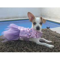 Ropa Para Perro, Hermoso Vestido,, Para Esa Ocasion Especial