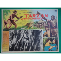 Tarzan Y El Muchado De La Selva Mike Henry Cartel De Cine