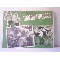 Cartel Tarzan Desert Mystery El Temerario Johnny Weismuller
