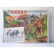 Cartel The New Adventures Of Tarzan El Indomable Herman Brix