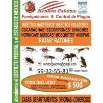 Fumigación Y Control De Plagas Servicio Y Producto
