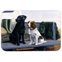En El Portón Trasero Labrador Y Perro De Aguas De Cocina O