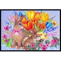 Conejo Nuevos Principios Ii Pascua Mat Interiores O Exterior