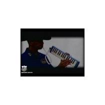 Pianolilla 32 Teclas Con Estuche Tipo Hohner Marca Hendrix