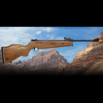 Rifle Juvenil Mendoza Rm-10 + Extras