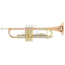 Trompeta Roy Benson Con Estuche Tr-202g Tono Bb Calibre Ml