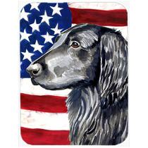 Bandera Americana Con Ee.uu. Junta De Corte Retriever Vidrio
