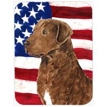 Bandera Ee.uu. De América Con Curly Coated Retriever De Cri