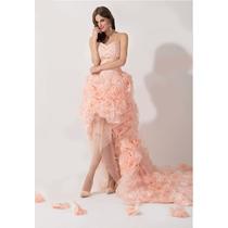 Hermoso Vestido De Quinceañera Largo Organza Alta Costra