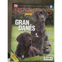 Gran Danes Revista Perros Pura Sangre $ 55