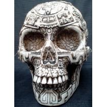 Figura Resina Tipo Hueso Cráneo Humano $ 117.22
