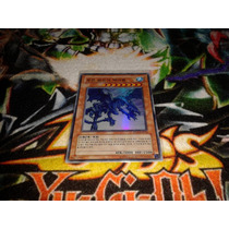 Yugi-oh White Night Dragon Super Rara Corena Nueva