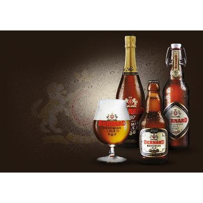 Copa tulipa cerveza bernard bohemian ale republica cheka for Copa cerveza