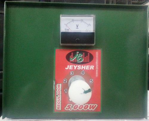 Regulador De Voltaje De 5000 Watts Profesional